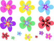 Mix Page of Colorful Flowers Royalty Free Stock Images