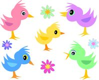 Mix Page of Small Birds and Flowers Stock Photography