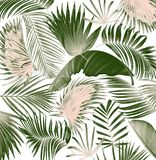 Mix palm leaf tree background Royalty Free Stock Photography