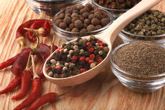 Mix of pepper Royalty Free Stock Photography