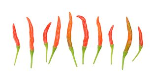 Mix  peppers Stock Images