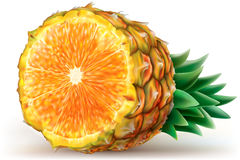 Mix of pineapple with orange Royalty Free Stock Photography