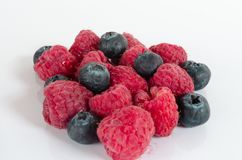 Mix of rasberries and blueberries Stock Images