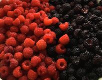 Mix of raspberries and blackberries stock photography