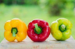 Mix red yellow and green bell pepper on wood table Stock Photo