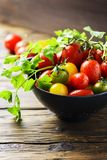 Mix of red, yellow and green tomatos Stock Photos