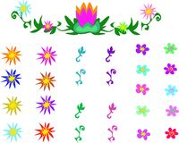 Mix of Relaxing Plants and Flowers Stock Images