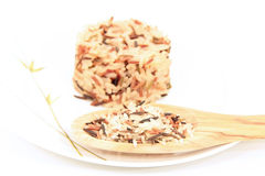 Mix rice Royalty Free Stock Photography
