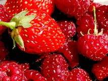 Red and fresh strawberries and raspberries royalty free stock photos