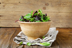 Mix salad (arugula, iceberg, red beet). In a wooden bowl royalty free stock images