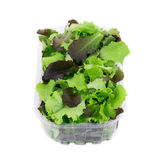 Mix salad in box. Royalty Free Stock Images