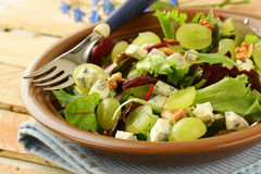 Mix salad with grapes and walnuts with  cheese Royalty Free Stock Photography