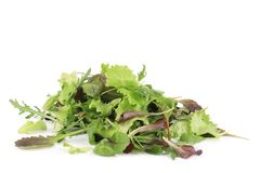 Mix salad. Royalty Free Stock Image