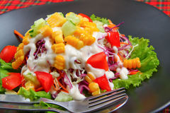 Mix salad with Mayonnaise Royalty Free Stock Photo