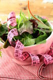 Mix salad  with a pink measuring tape Stock Image
