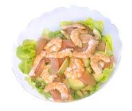 Mix salad in studio Stock Images