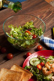 Mix salad. Royalty Free Stock Photo