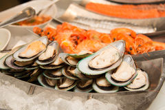 Mix sea food cocktail on ice Royalty Free Stock Photo