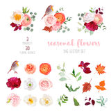 Mix of seasonal plants anf flowers big vector collection. Peachy rose, white and burgundy red peony, orange ranunculus, carnation, hydrangea, autumn leaves vector illustration