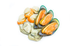 Mix Shellfish Royalty Free Stock Photo