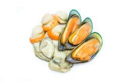 Mix Shellfish. Isolated on white background Royalty Free Stock Photo