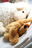 Mix of soft toys in the children room Stock Photo