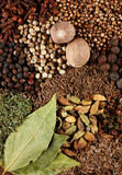Mix spice Stock Images