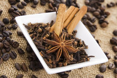 Mix spice Royalty Free Stock Photography