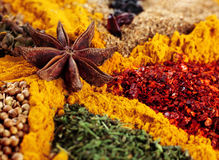 Mix spice background. With anise star and curcuma closeup Royalty Free Stock Photo