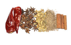 Mix of spice Royalty Free Stock Image