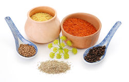 Mix of spices. Variety of spices - cooking concept Stock Photo