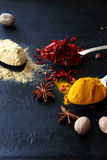 Mix of spices on dark background Stock Photo