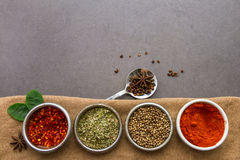 Mix spices and herb background. Royalty Free Stock Images
