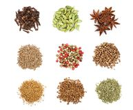 Mix of spices isolated on a white background. Top view. Flat lay. Set or collection. Mix or various kinds of spices isolated on a white background. Top view royalty free stock images
