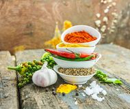Mix spices main subject chilli seed on wood texture. Stock Photography
