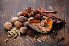 Mix of spices Royalty Free Stock Images