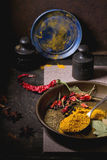 Mix of spices Royalty Free Stock Image