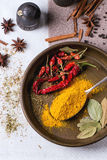 Mix of spices Royalty Free Stock Photos