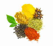 Mix spices on wood texture background. Royalty Free Stock Image