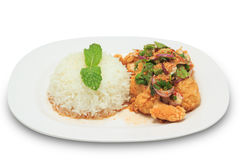 Mix spicy fried chicken with rice royalty free stock photos