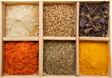 Mix Spicy Spices in box. As background Stock Image
