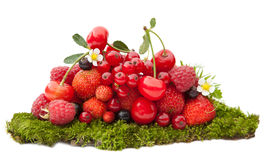 Mix of summer berries on moss. Mix of fresh summer berries on  green moss isolated on white Royalty Free Stock Image