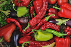 Mix of Sweet peppers, chili peppers and tomatoes in a wooden bowl. Mix of Sweet peppers, chili peppers and tomatoes on a sackcloth royalty free stock image