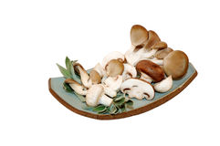 Mix of three mushrooms on a plate. With white isolated background Royalty Free Stock Images
