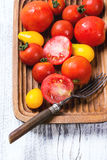 Mix of tomatoes Stock Photos