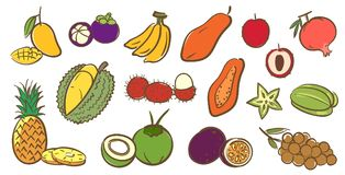 Mix tropical fruits collection, cute colorful vector illustratio Stock Photography