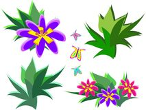 Mix of Tropical Plants and Butterflies Stock Image