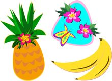 Mix of Tropical Plants and Fruits Stock Photography