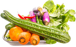 Mix Tropical Vegetables Isolated IX Royalty Free Stock Images