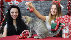 Mix of two scenes, beautiful girls with a cats in holiday spirit surrounded by New Year`s decoration stock video